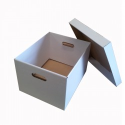 Cardboard Filing & Storage Boxes