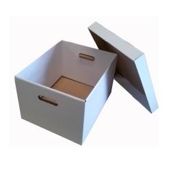 Filing & Storage Boxes